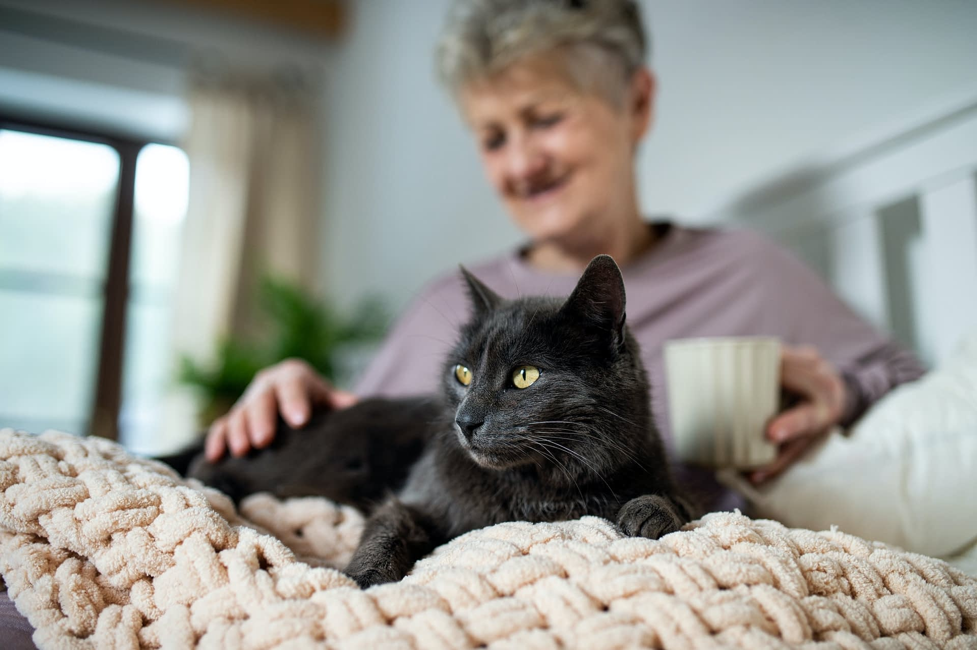 Happy senior woman with cat resting in bed at home